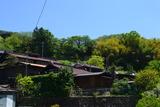 1105早川 (6)