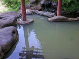 黄金温泉2
