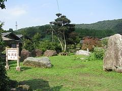nanasawa