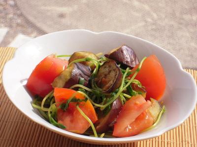 茄子とトマトと豆苗のピリ辛醤油炒め