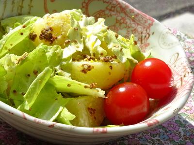 春キャベツと粉ふきいものサラダ