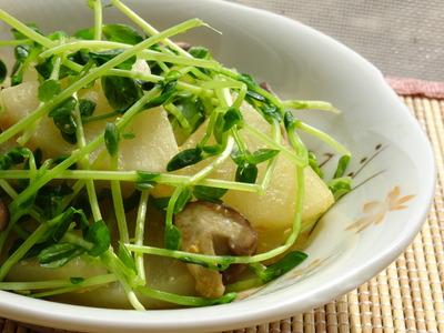 大根と椎茸と豆苗の生姜みそ風味