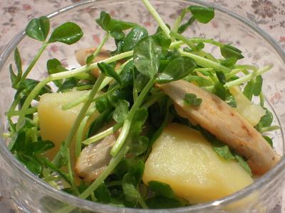 新じゃがと焼きゴボウと豆苗のピリ辛サラダ