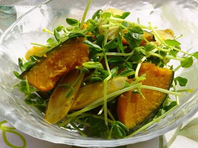 かぼちゃとゴボウと豆苗のサラダレモン風味
