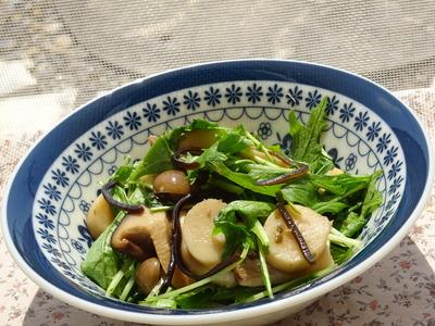 水菜ときのこの塩昆布ゆず生姜風味