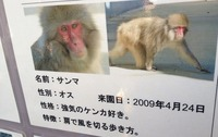 26 ueno zoo with momo&yuko-3