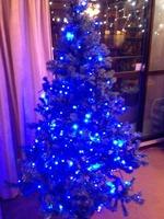2012 christmas-2