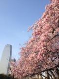 17 Tokyo Prince Hotel-1