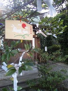 2010氷川神社