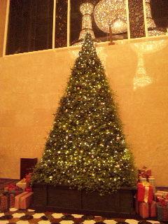 ハイアットクリスマスツリー大