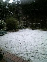 2008初雪2