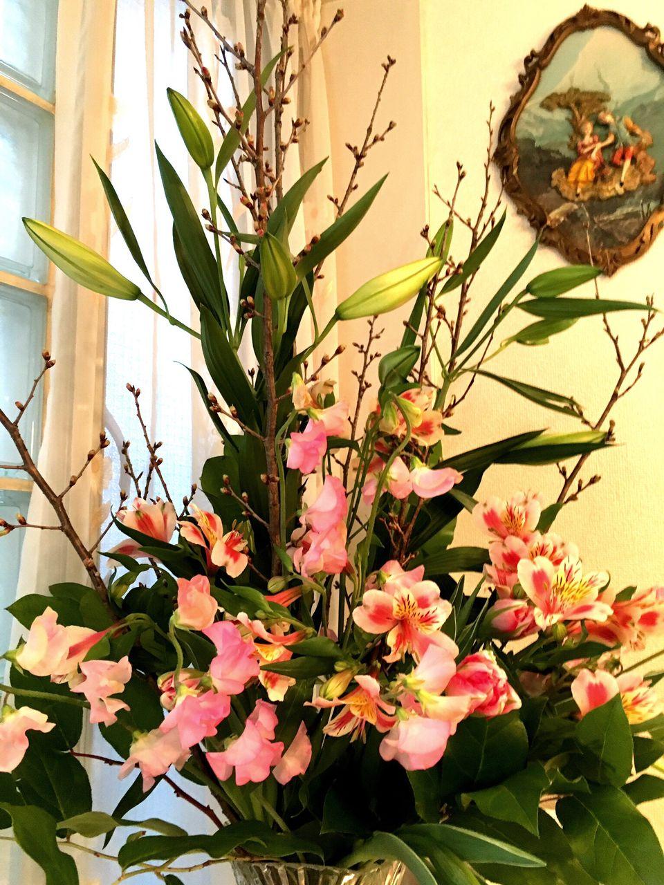 広尾サロンの花