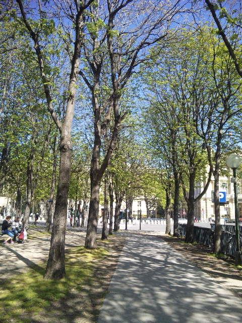 春のパリシャンゼリザ通り