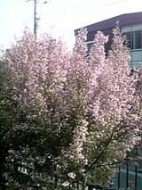 f3359ad2.jpg
