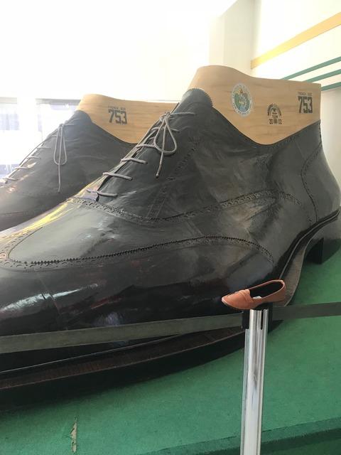 世界一の靴