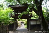kawagoe_c