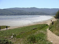 Alan Sieroty Beach@Tomales Bay  1
