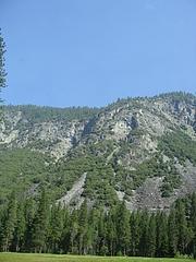 2009 171
