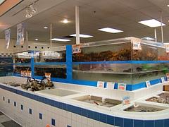 RanchMarketの店内水槽