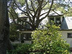 Claremont Ave辺りの家々
