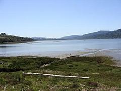Alan Sieroty Beach@Tomales Bay  13