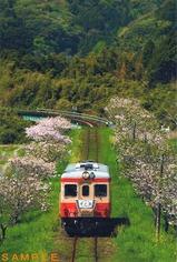 いすみ鉄道ポストカードキハシリーズ�