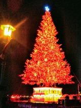 函館バス函館夜景号クリスマスファンタジー