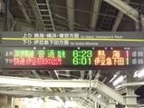 2012伊豆初日の出号1