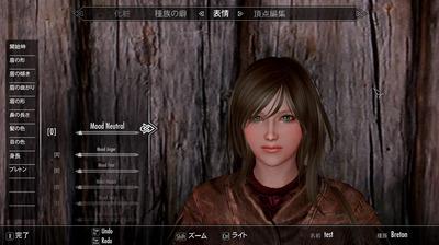 skyrim461-charamake-mod