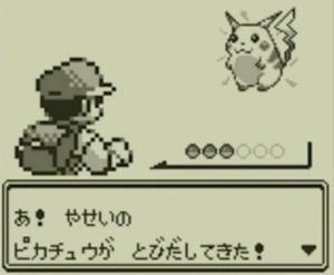 porg101-pikachu