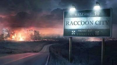 bh-raccoon1