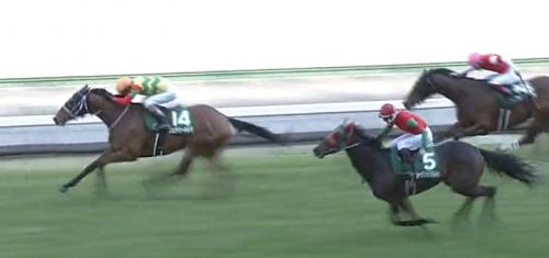 福島牝馬S フェアリーポルカ