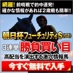 シンクタンク:朝日杯FS250_250