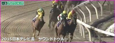 日本テレビ盃 サウンドトゥルー