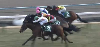 京都牝馬S ミスパンテール