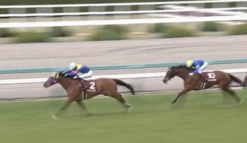 阪神牝馬S サウンドキアラ
