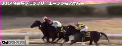 エーシンモアオバー 名古屋グランプリ