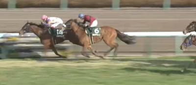 中山牝馬S カワキタエンカ