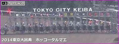 東京大賞典 ホッコータルマエ