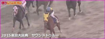 東京大賞典 サウンドトゥルー
