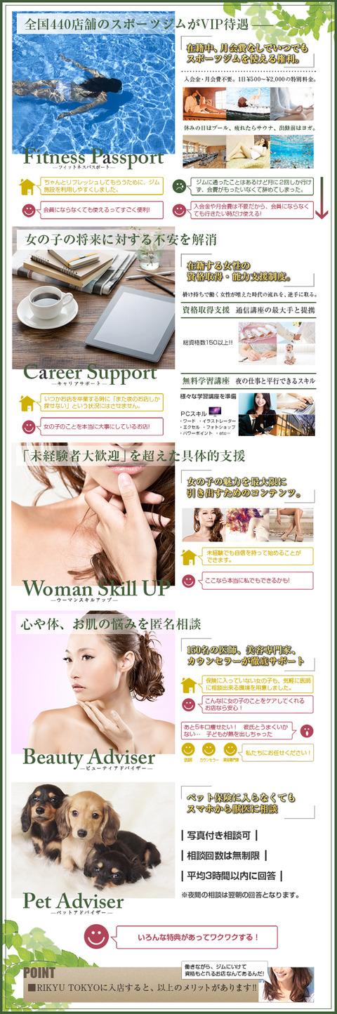 img_premium_support