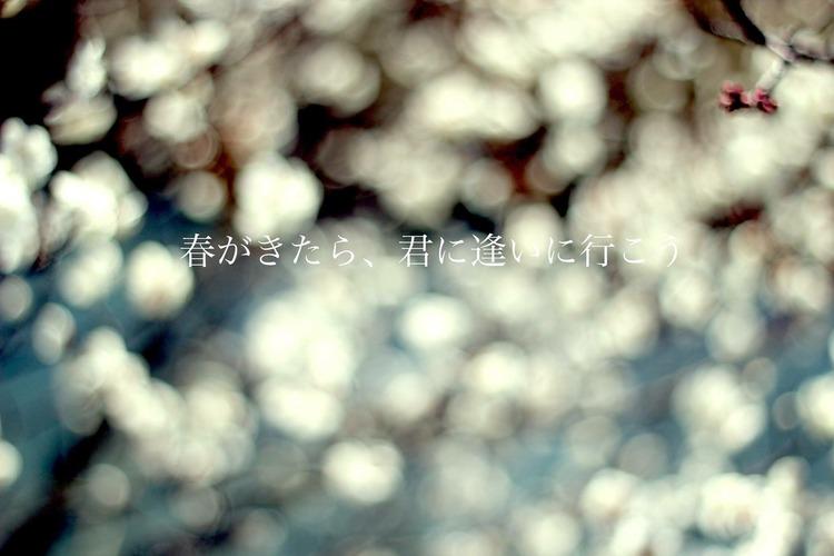 IMG_7539