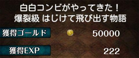 wbc_02_06