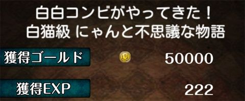 wbc_01_04
