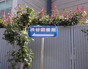 渋谷図書館
