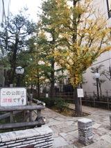 新宿遊歩道公園四季の路