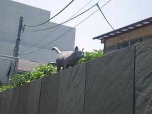 文豪たちの東京めぐり 夏目漱石編 旧居跡の猫