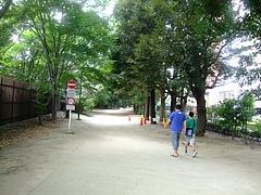 新宿御苑散策路