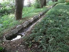 新宿御苑散策路の水路