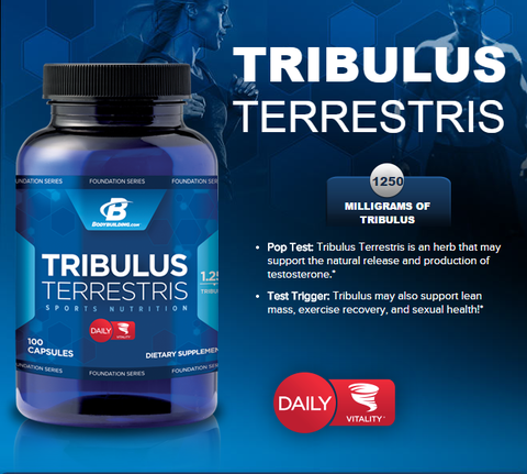 tribulus-bodybuilding